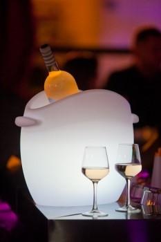 "SO FRESH - LED Flaschenkühler 43x35cm ""App-control"""